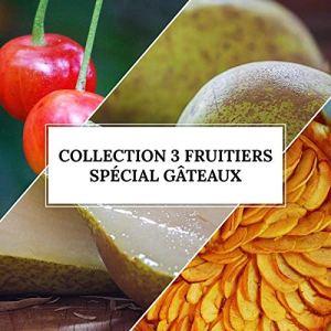 Collection 3 Fruitiers Spécial Gâteaux