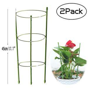 Anzmtos Lot de 2 Anneaux de Support pour Plantes de Jardin, Grande Taille, Treillis en Acier Inoxydable, pour Plantes grimpantes, légumes, Fleurs et Fruits avec 3 Anneaux réglables 45 cm