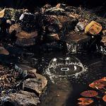 PONTEC PondoStar LED Ring éclairage du Bassin, Noir