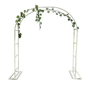 XLOO Arche pour Plantes grimpantes, Arche de Jardin, tonnelle de Jardin, Blanc, métal, avec Cadre de Soutien, Plusieurs Tailles, décoration cérémonie Mariage fête