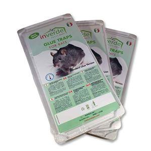 3 lots = 6 plaques plastique de glu anti rat et anti souris – NUISIPRO