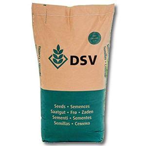 DSV PAYS ÖKO 2249 LUZERNE 25 kg pour léger planchers