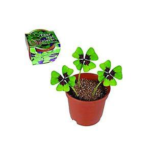 Trèfle à quatre feuilles – Porte bonheur – 4 leaf clover – Lucky clover – Fer à cheval – Grigri