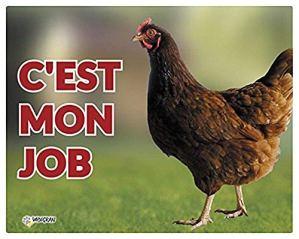 Vadigran Panneau Photo Poule pour Élevage/Agriculture Urbaine