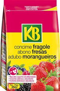 KB–Engrais fraisiers 800g