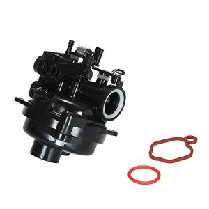 Leepesx Carburateur pour moteurs Briggs Stratton 550EX 09P702 9P702 Remplace 799584 Carb