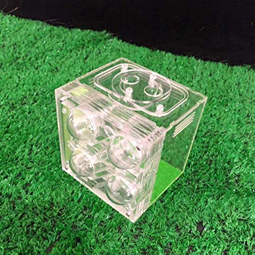 WCX Alimentation Transparente Ant Boîte D'ornement Alimentation Nest Ant Farm Acrylique Mars Série (Color : B)