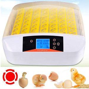Sailnovo Couveuse Incubateur œufs Retournement Automatique 56 œufs Numérique Appareil d'Incubation Eclosion de Poussin