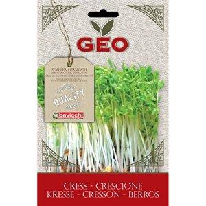 Geo Graine à Germer Cresson Brun 12,7 x 0,7 x 20 cm