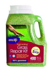 Encap LLC – 400-sq. FT. Northern Mix Herbe kit de réparation
