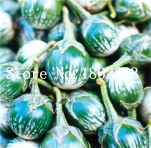 Generic frais 100 pcs aubergine graines de fruits sucrés pour la plantation verte