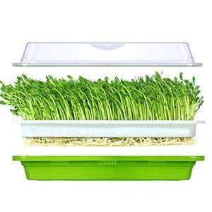 Huntfgold Seed Sprouter Tray Bac à germination pour graines sans BPA Plateau extra petit trou sans papier nécessaire avec couvercle pour le jardin, la maison, le bureau