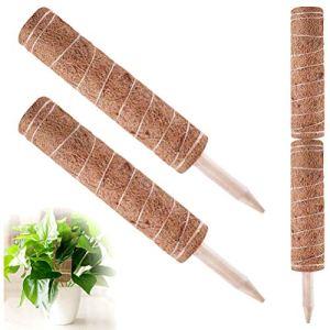 Kelisidunaec Support pour plante en coco Totem Poteau en fibre de coco, bâton de mousse de coco, totem de 30,5 cm