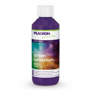 PLAGRON – PLAGRON GREENSENSATION – 100ML