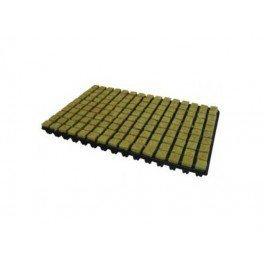 Plateau de laine de roche – 150 cubes de 2,5 x 2,5 cm