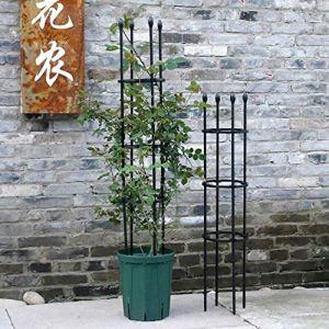 YXYOL Jardin d'appui Stake, Plantes Supports pour Plantes en Pot, Cage Support Ring Plantons pour Rose, Fleurs de Vigne, Fleur Statif Jardinage Clematis Escalade