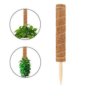 Akemaio 1 pcs 50 cm Fibre de Coco Mousse Poteau Plante Support Totem Poteau Support pour Tout Maison Escalade Plantes