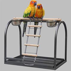 BESISOON Support à Oiseaux Portable Station d'alimentation des Oiseaux en métal for Fleurs et Autres Gris Perroquets Moyennes et Grandes Oiseaux d'ornement (Couleur : Noir, Taille : 55x33x46cm)