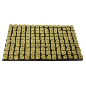 GRODAN Tray 150anzucht médias de laine de roche de Bloc 2,5cm x 2,5cm en coque en plastique 53cm x 32cm avec greenception wuchs Engrais 100g 18x