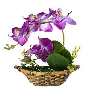 HEELPPO Fleurs Plante Artificielle Artificielle en Pot Simulation Pot De Fleur Simulation Plantes en Pot Phalaenopsis Adapté Aux HôTels Restaurants Bureaux Purple