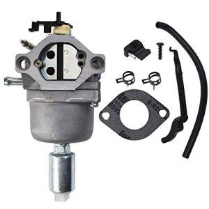 Hippotech Carburateur pour moteurs Briggs 594593, 699109, 796109, 793224, 794572