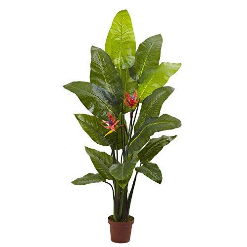 Plante d'oiseau de paradis presque naturelle (toucher réel), 147,3 cm