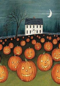Toland Home Garden House Drapeau, Tissu, Multicolore, 71.12×101.6×0.1 cm