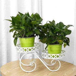 YLJR Support De PlanteVoiture De Citrouille à 2 Niveaux De Support De Plante en Métal De Jardin De Patio Extérieur IntérieurBoisSupports De FleursIntérieur