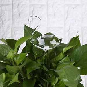 ACC Distributeur d'eau en Verre pour Plantes et Fleurs 7 Types ZY