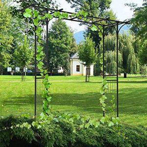 AYNEFY Arche de jardin en métal avec cadre en fer pour pergola, arche de rosier, arche de jardin pour extérieur, roses, plantes grimpantes, jardinage, allée, arche 210 x 209 x 40 cm