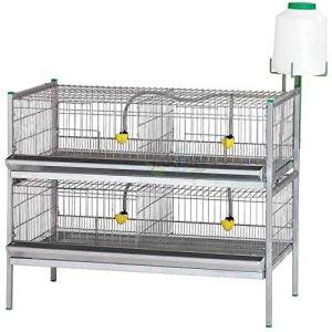 Batterie exposition poules, poules, oiseaux. Dimensions : 105 x 62 x 84 cm.