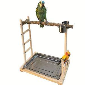 CuteLife Stand d'oiseaux Sauvages Oiseaux Support en Bois for Oiseaux de Formation de Formation appropriée for Les Oiseaux d'ornement tels Que Perroquets (Couleur : Wood, Taille : 49x37x59cm)