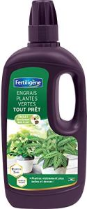 Fertiligène Engrais Plantes Vertes Tout Prêt, 1L