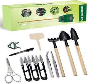 Hydrogarden kit bonsaï, Kit de Plantation bonsaï à Faire Pousser – Ensemble Cadeau Jardinage – Ensemble Comprend: kit de Test de Sol 3 en 1, Ensemble d'outils de Transplantation