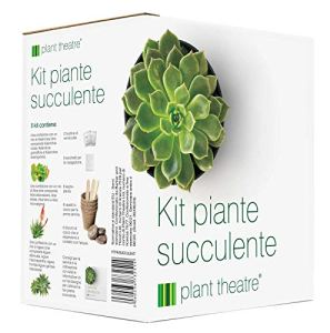 Kit de plantes si succulentes Plant Theatre – Kit cadeau de graines de superbes variétés de plantes succulentes à cultiver en toute facilité !