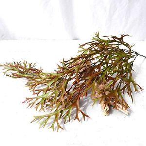 meixiang Fougères Vertes, Fleurs en Plastique Murales, Simulation De L'Arbre De Bois Marron