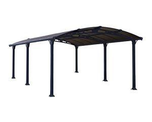 Palram Arcadia Carport 5000 Aluminium et Polycarbonate Abri de Voiture Gris, 18 m²