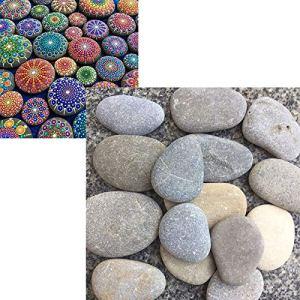 YST Pierres plates à peindre & galets décoratives pour jardin Pierres lisses naturelles pour décoration d'aquarium 20 à 40 mm 1.9 kg