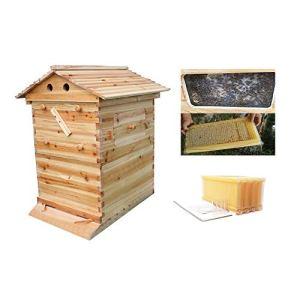 ZJDU Cadres Automatiques De Ruche De Ruche De Miel + Boîtes De Ruche De Maison en Bois D'apiculture -Ruche D'apiculture en Bois,4 Peigne De Cadre De Ruche Automatique –