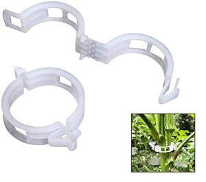 auvstar Plante Clips,plastique, pinces, clips à suspendre, clips de vigne, Vigne Clipsplant Clips support tomates, poivrons, Vigne plantes et fleurs de développement Droit, (100 pces)