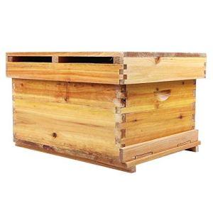 Caredy Honey Beehive Box, en Bois Honey Keeper Beehive Beekeeping Brood House 10 Frame Apiculture Box pour Les débutants et Les apiculteurs expérimentés