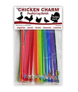 Chicken Hill 20Charm Poulet Volaille Jambe Bandes–Comprend Americas Super Héros Préféré de