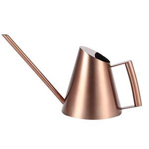 Fditt Arrosoir Pot Solide en Acier Inoxydable avec Bec Long pour Bonsaï Intérieur Plantes Jardin Vert Plante Fleur Arrosage Bouilloire Multiple Capacité en Option(1500ml)
