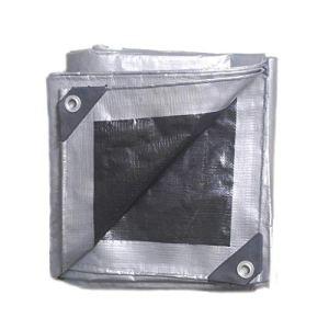 Fenteer 200GMS PE Imperméable D'auvent bache de Protection Tente Pliable Anti poussière