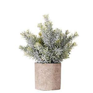 hanbby Plantes Plante Artificielle Interieur Faux Plantes Plantes d'extérieur Artificielle des Plantes en Plein Air Plantes Face Intérieure Petit