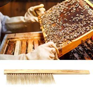KUIDAMOS Brosse à Miel d'abeille ne Nuit Pas aux Abeilles Brosse de Ruche Balayage d'abeille Durable pour pelouse pour Apiculteur