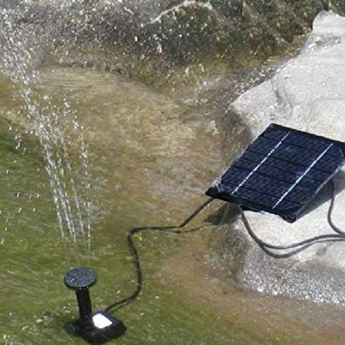 Lamta1k Pompe à fontaine à eau avec filtre CC sans balais pour jardin, terrasse, piscine solaire