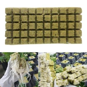 MOVKZACV Rockwool Cubes Base de compresse en laine de roche pour culture hydroponique