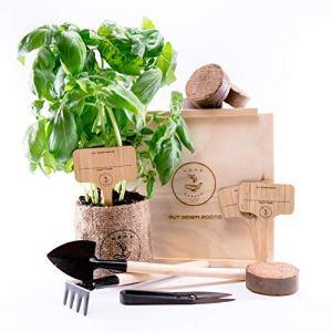Putt Down Roots Lot de 4 semences écologiques avec boîte en bois avec couvercle