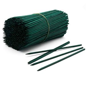 Royal Imports Bâtons en Bois pour Le Jardin 8 Pouces Vert